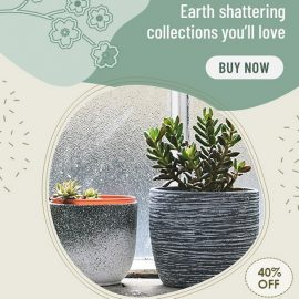 Plant Pots - Changeable PPT Video Ad Template